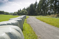Bales of silage Stock Photography