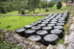 Bales of silage in a field. In Somiedo Nature Reserve, Principality of Asturias, Spain Stock Image