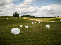 Bales of silage Royalty Free Stock Photography