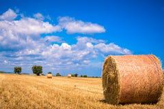 Bales Stock Image