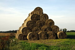Bales of straw. On the field after the harvest Royalty Free Stock Image