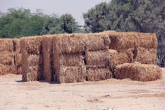 Bales of straw. Stock Photography
