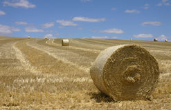 Bales-of-straw Stock Photos