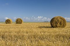 Bales of straw. Harvest scene - bales of straw Royalty Free Stock Images