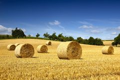 Bales of straw. Field with bales of straw in Germany Stock Photography