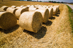 Bales of straw and cereals on a field Stock Images