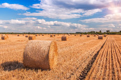 Bales, straw, cloudy sky Royalty Free Stock Images