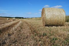 Bales of straw in a farm field Royalty Free Stock Photo