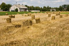 Bales of straw on field Royalty Free Stock Images