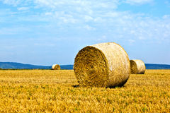 Bales of straw on a field Royalty Free Stock Photo