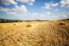 Bales of straw in a field Royalty Free Stock Photo