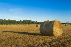 Bales of Straw in Field Royalty Free Stock Photo