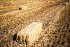Bales of straw in a field Stock Photo
