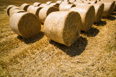 Bales of straw and grain in a field Royalty Free Stock Photography