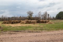 Bales of straw on the ground royalty free stock photo