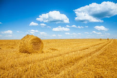 Bales of a straw on harvested field and blue sky Stock Photo