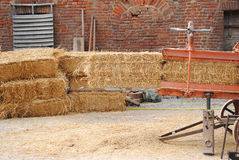 Bales of straw. Hay packing, traditional method Royalty Free Stock Photo