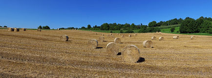 Bales of Straw Panorama Stock Images