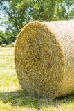 Bales of straw Royalty Free Stock Image