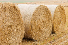 Bales of straw on stubble field Royalty Free Stock Photos