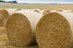 Bales of straw on stubble field Royalty Free Stock Photography