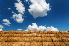 Bales of straw under blue cloudy sky. Harvest time royalty free stock photo