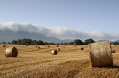 Bales of straw in the wheat fields. And clouds in the mountains Royalty Free Stock Image