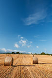 Bales of straw in the wheat fields Stock Photography