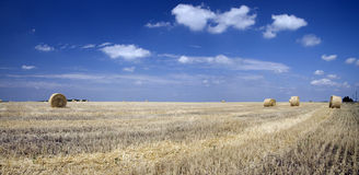 Bales of straw on a wheaten field. In Ukrainian Royalty Free Stock Images