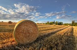 Bales on stubble stock photo