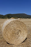 Bales in Villarcayo Royalty Free Stock Photo