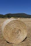 Bales in Villarcayo Royalty Free Stock Photo