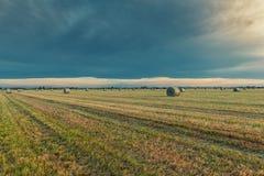 Balesin de foin la campagne Italie du nord Photo stock