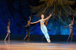 Balet perły Obrazy Stock