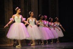 Baletnicza dziewczyny kolejka - Baletniczy dziadek do orzechów Fotografia Stock