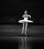 Baletnicza spódnica obrazy stock
