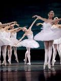 baletniczego perfome królewski rosyjski łabędź Zdjęcia Stock