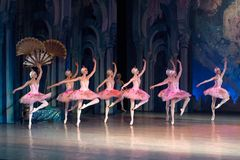 Baletniczego tancerza baleriny taniec podczas baletniczego Corsar Fotografia Royalty Free