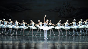 Baletniczy Łabędzi jezioro obraz stock