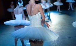 Baletniczy Łabędzi jezioro oświadczenie Baleriny w ruchu Obraz Royalty Free