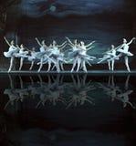 balettlaken utförde den kungliga ryssswanen Arkivfoto