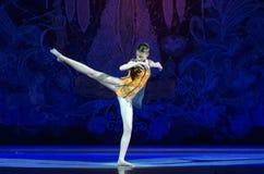 Balettpärlor Arkivfoto