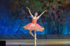 Balettpärlor Royaltyfri Fotografi