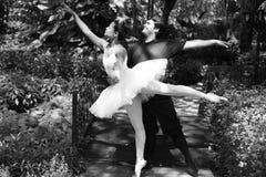 balettpark arkivfoton