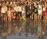 BALI Ö - INDONESIEN JULI 2007: Feriesköldpaddor i Bali arkivfoton