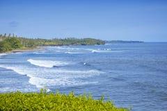 bali Индонесия Взгляд от окна на цветя тропических кустах и море стоковое изображение rf
