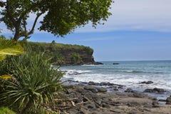 bali Индонесия Пляж морем с тропическими заводами стоковые изображения