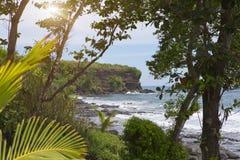 bali Индонесия Пляж морем с тропическими заводами стоковое изображение