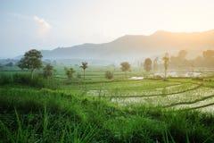 Bali Fotografia Stock