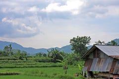 Bali 02 Arkivfoton